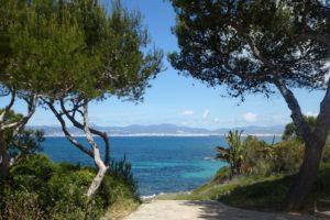 Alkohol a Mallorca – pozor na pití na ulici!